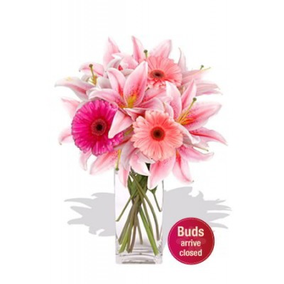 Gerberas and Oriental Lily Vase Bouquet